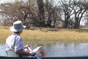 Watching cheetah on the river bank from a canoe